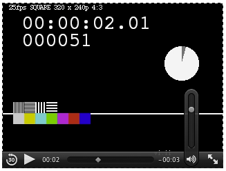 WebKit Video Element With Controls